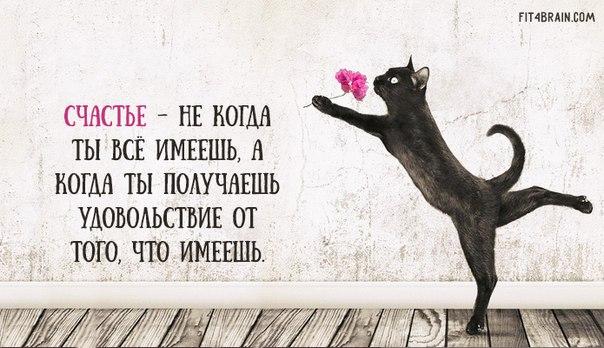 https://pp.vk.me/c627431/v627431799/4c6e4/4QduqLhMeWk.jpg