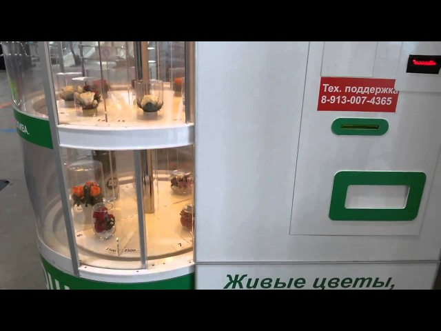 Как работает фломат? На примере цветов в стекле NatFlora Новосибирск