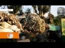 Мінае год ад трагедыі з малайзійскім боінгам / Свет < Белсат>
