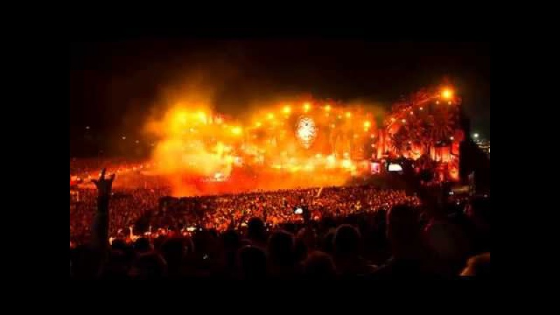 Tremor (Live at Tomorrowland 2014) Dimitri Vegas & Like Mike, Martin Garrix - HD