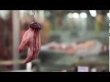Магазин по продаже человеческого мяса. Кошмар.