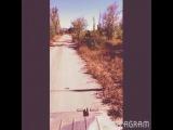Вадим(Илан) Рябов on Instagram На пора, нам пора на поражение
