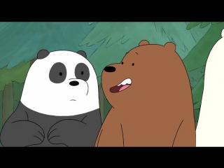 Вся правда о медведях: 1 сезон 20 серия