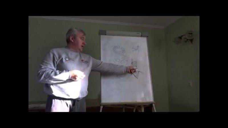 Невральный компонент кресцово-поясничной области_Исаченко Юрий