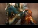 Волк против Орла и Собаки