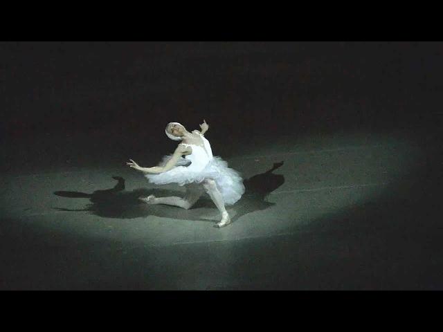 Алина Сомова лебедь Мариинский балет Alina Somova Dying Swan