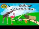 Алфавит с животными. Как говорят животные Слушаем звуки. Учим буквы.