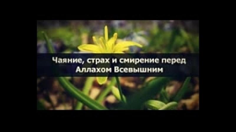 Абу Яхья Крымский: