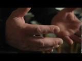 Российский документальный фильм о вегетарианстве: Жизнь прекрасна (2011 г., Москва)