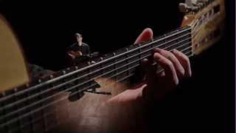Семиструнная гитара У ворот М. Высотский