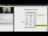 6th Lecture-Kaplan Step 1 CA-Biochemistry Medical Genetics-Turco-Jan 12, 2014