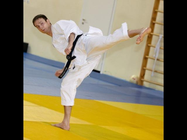 Budo Academy. Alex Chichvarin (ushiro geri)