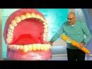 Как правильно чистить зубы. Азбука здоровья