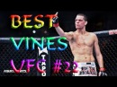 Лучшие Вайны MMA UFC / Best Vines MMA Knockout 22