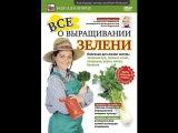 Ч.3. ВСЕ о ВЫРАЩИВАНИИ ЗЕЛЕНИ зеленый лук, шпинат, салат, петрушка, укроп, кинза, б ...