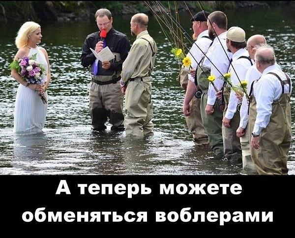 http://cs627519.vk.me/v627519032/4a5d5/0qMmIA-pYWE.jpg