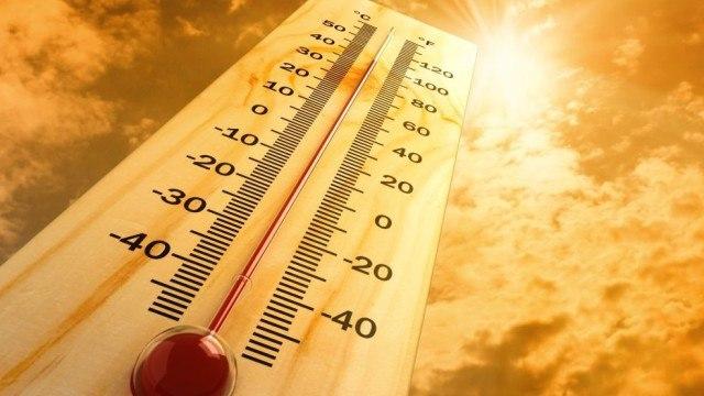 Из-за жары в Ростовской области МЧС объявило экстренное предупреждение