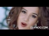 Dilso_z_-_Begimey