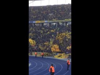 Фанаты (Герта - Боруссия 6.02.2016)