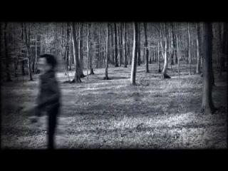 VENIN CARMIN - FADE AND FORGET