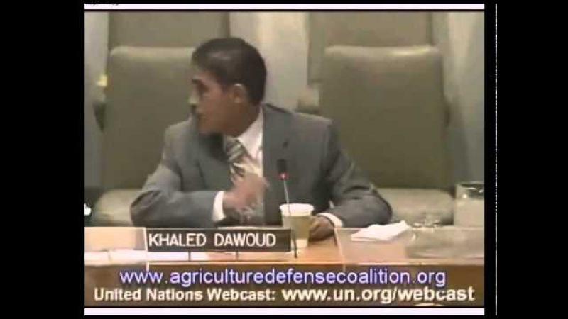 Химтрейлы. Заседание в ООН