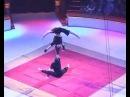 Cirque De Demain - Duo Iroshnikov