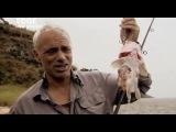 Речные монстры 2-1 - Рыба демон