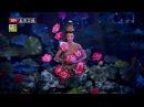 (舞蹈) 莲花心 - 杨舞 (北京卫视2015春晚) (Dance) Lotus Heart - Yang Wu (Beijing TV 2015 Spring Festival Gala) HD