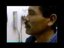 BBC Сверхчеловек 5 Превращение вредителей в спасителей Документальный 20