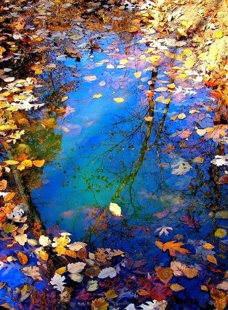 Що для тебе означає осінь?