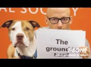 Moby - Almost Home Best Friends Animal Society Lyric Video with Damien Jurado