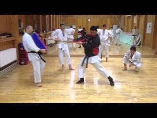 Тренировка Шотокан каратэ. Кидзами. Тренирует Олег Цой