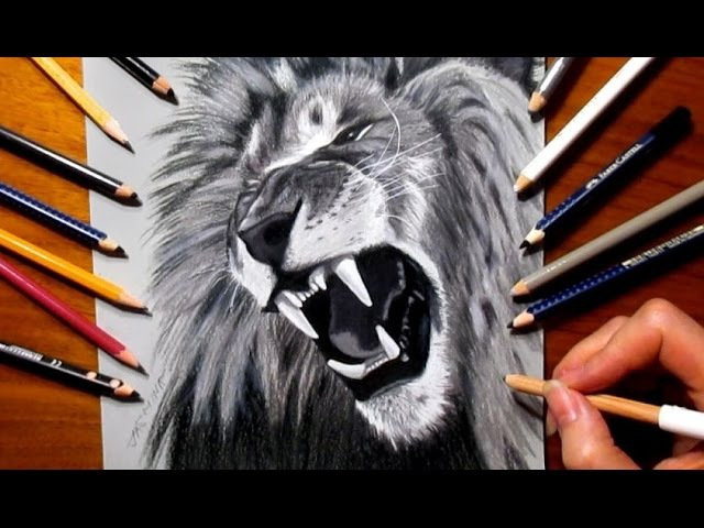 Tribute Pencil Drawing to Cecil The Lion ♥ R.I.P.   塞西爾獅子 - Speed Draw   Jasmina Susak