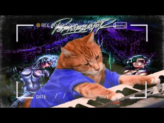 Perturbator cat