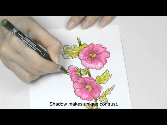Sakura - How to Draw with Pigma Micron KOI Coloring Brush Pen