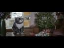 Mog's Christmas Calamity история о коте неудачнике и о том как все нашли хату на НГ