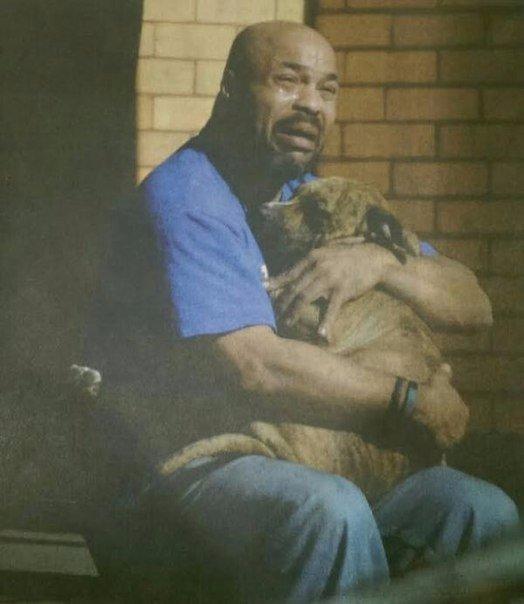 Мужчина держит свою собаку, которая надышалась угарным газом. Снимок был сделан...