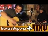 Белая Ворона - ЧАЙФ  Как играть на гитаре (2 партии) Аккорды, табы - Гитарин