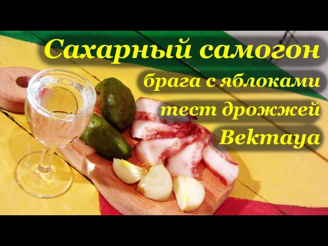 Домашний самогон. Брага с яблоками. Тест дрожжей Bekmaya