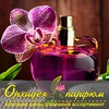 Орхидея Парфюм