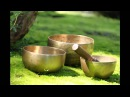 3 Hours Long Tibetan Singing Bowl l Meditation Chakra Healing Tone G Music Throat Chakra
