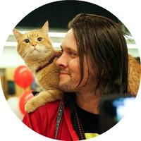 Смотреть фильм уличный кот по имени
