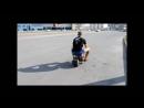 самодельный мини байк к 1 рестайлинг mini bike home made - YouTube_0_1434058408688