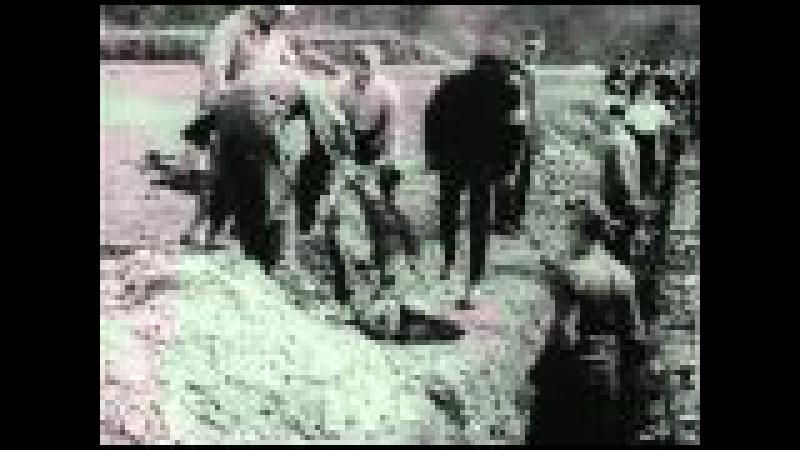 Нацистские концентрационные лагеря / Nazi Concentration Camps (1945)