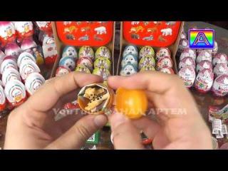 66 шоколадных яиц kinder сюрприз Animal Planet Дикие Животные