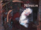 Fields of the nephilim - Shine
