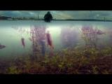 Зимняя рыбалка на окуня. Подводная камера онлайн