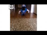 ТОП 10  СМЕШНЫЕ СОБАКИ 2014 15 минут!!!! САМАЯ СМЕШНАЯ подборка видео с СОБАКАМИ 2014