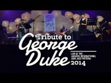 Tribute to George Duke Live at Java Jazz Festival 2014
