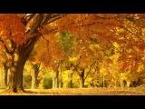 Лидия Клемент - Осень